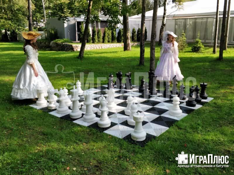 Шахматы большие